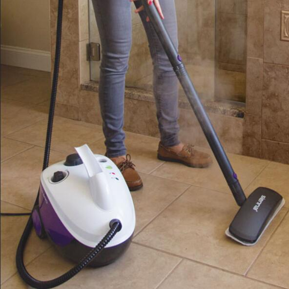 best canister steam cleaner review