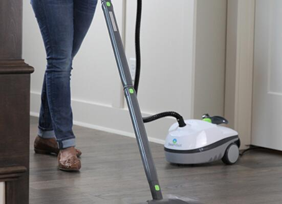 what is the best canister steam cleaner